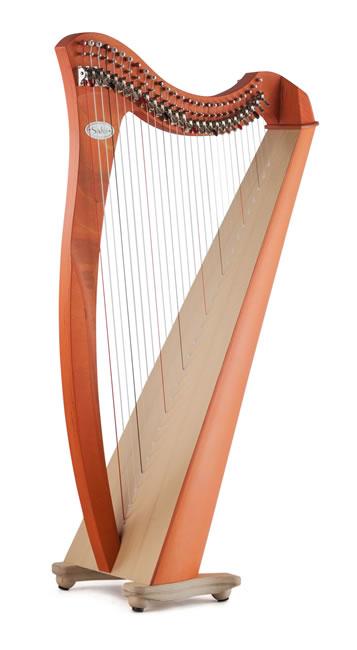 ParaguayanHarps com - Salvi Harps Authorized Dealer